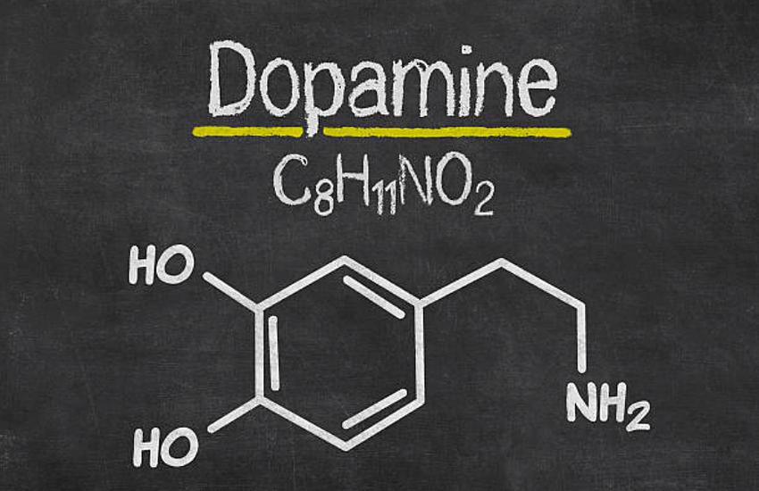 dopamina jak zwiększyć poziom dopaminy